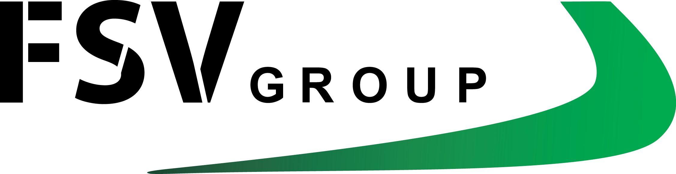 Logo for FSV Group